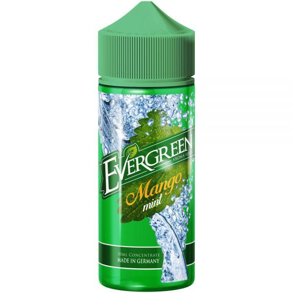 Evergreen - Mango Mint Aroma 30ml Longfill